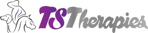 TS Therapies
